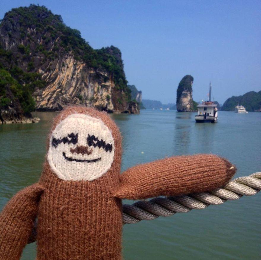 Meet-Super-Sloth-The-Worlds-Most-Famous-Woolen-Traveler-__880