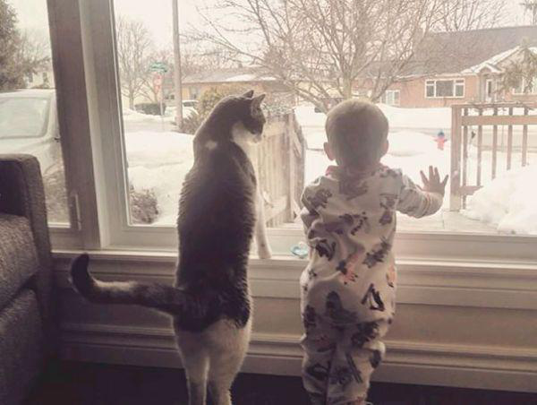 adorable-kids-with-their-cats-20-photos-2