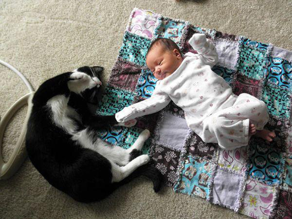 adorable-kids-with-their-cats-20-photos-3