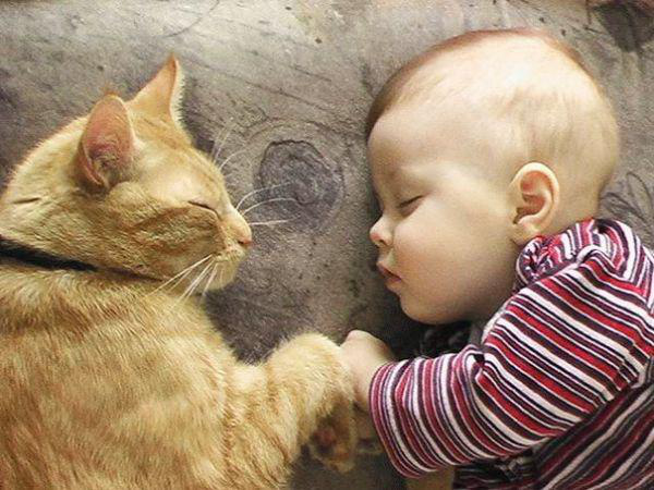 adorable-kids-with-their-cats-20-photos-7