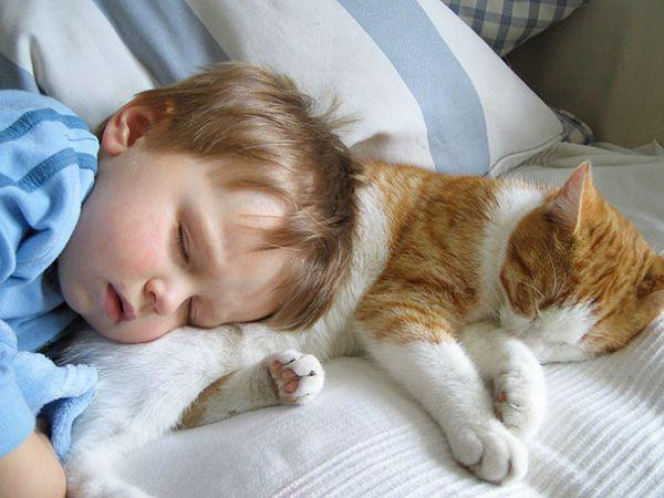 adorable-kids-with-their-cats-20-photos-8