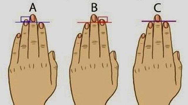 Що може розказати про людину довжина безіменного пальця?
