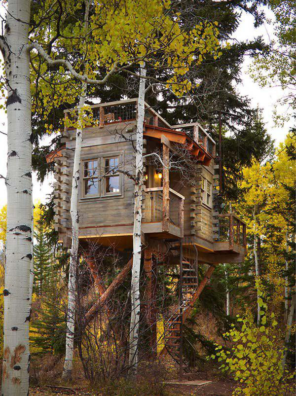 incredible-tree-houses-treehouses-10