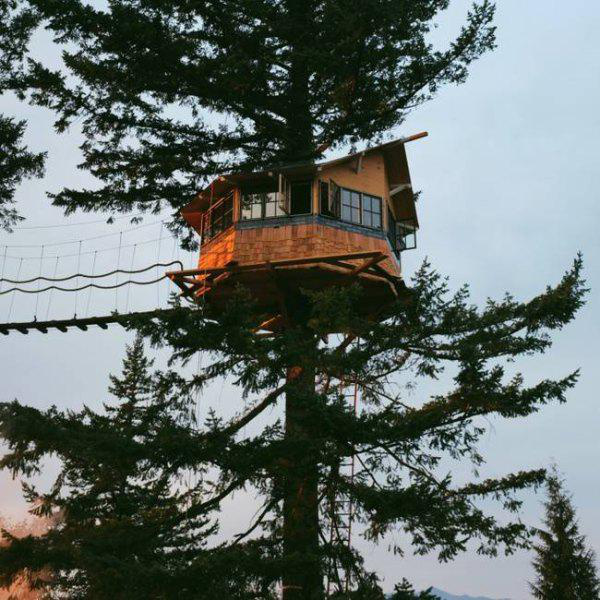 incredible-tree-houses-treehouses-16