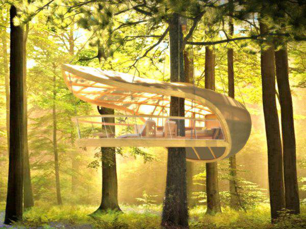 incredible-tree-houses-treehouses-21
