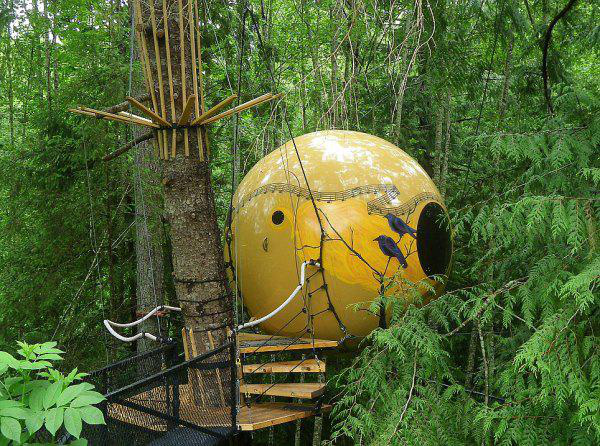 incredible-tree-houses-treehouses-8