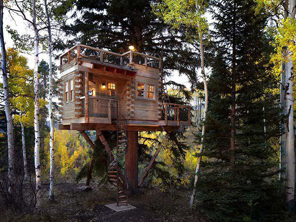 incredible-tree-houses-treehouses-9