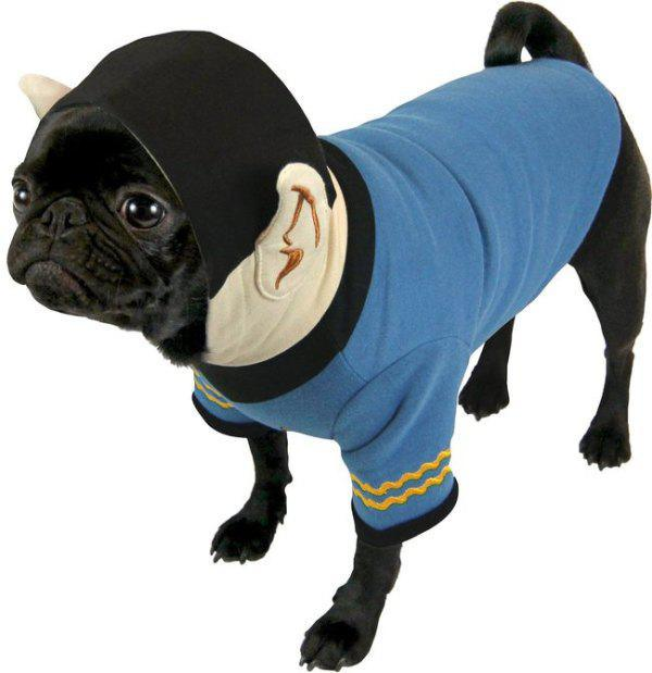 geeky-pet-products-accessories-16