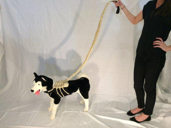 geeky-pet-products-accessories-3