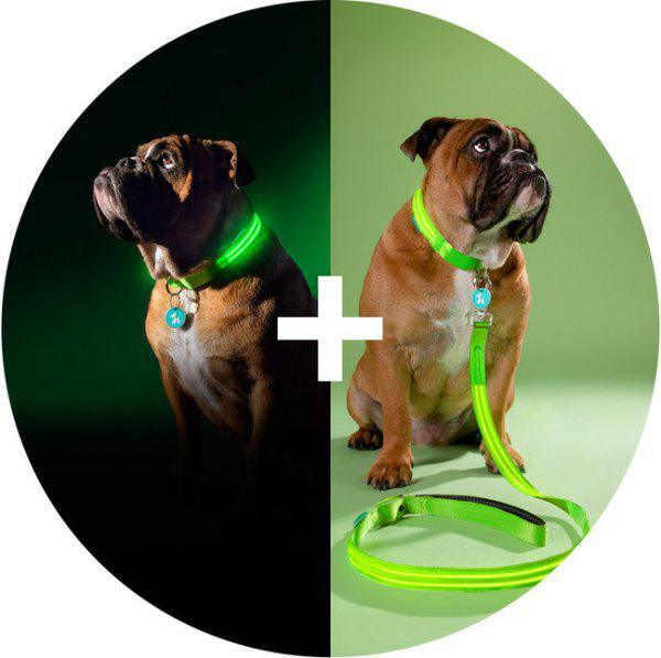 geeky-pet-products-accessories-8
