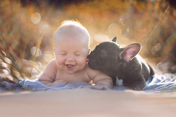 Милі фотографії малюка та пса, які народились в один день