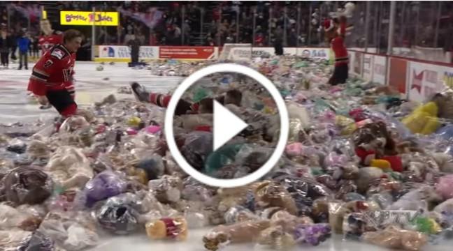 Хокеїстів закидали 28 815 ведмедиками