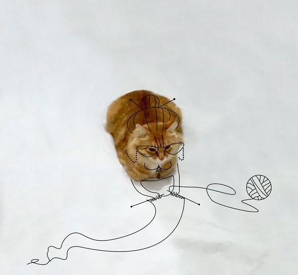 cat-doodle__605