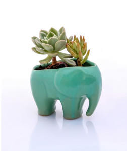45-Amazing-Daily-Use-Objects-For-The-Lovers-Of-Elephants-12