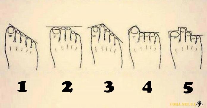 Який ваш тип ступні?