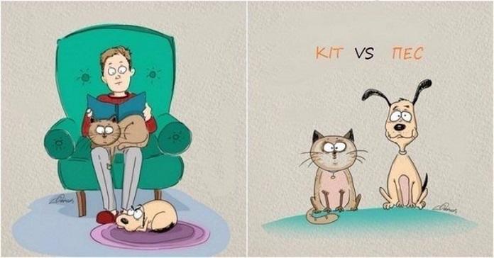 Кіт чи пес? Відношення тварин до людей