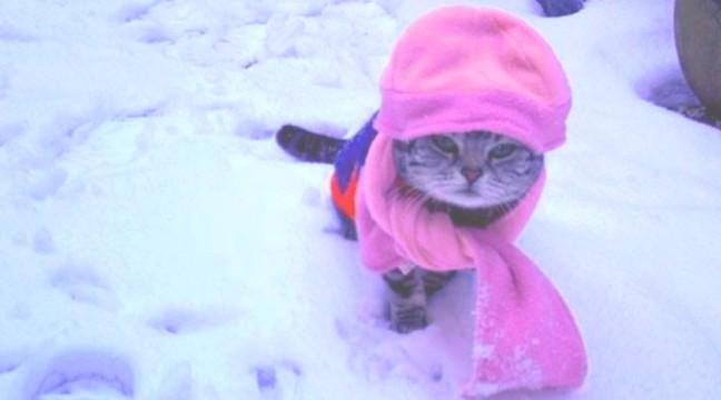 Справжні зимові розваги. 10 фото