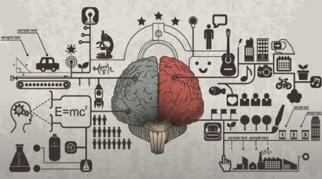 50 порад для поліпшення роботи мозку