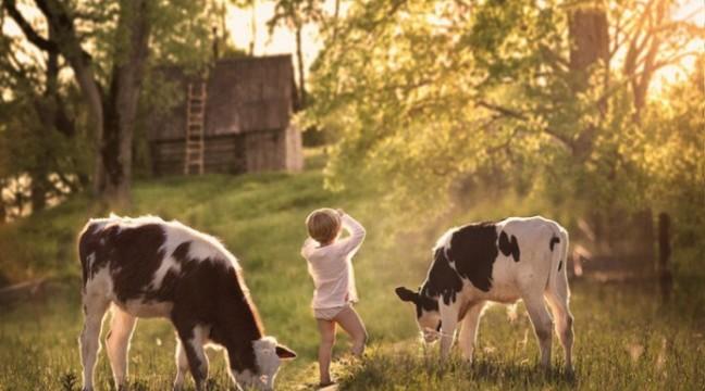 Дитинство у селі