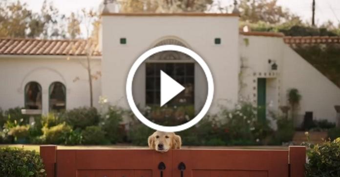 Зворушливий ролик про тих, хто завжди чекає вдома