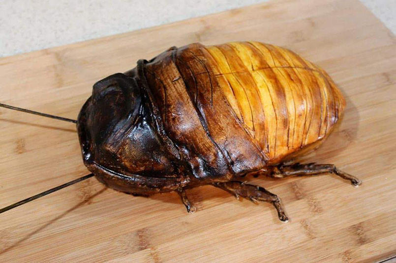 dey-cockroach-cake-805x536