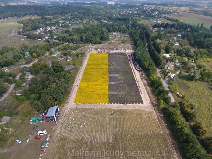 Новий рекорд Гіннеса: українці створили найбільший прапор із живих квітів