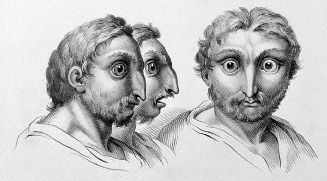 12 прикладів того, як виглядали б люди, якби походили від інших тварин
