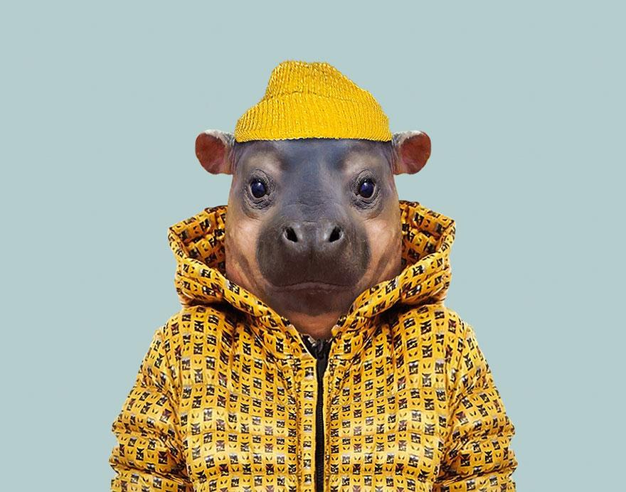 animals-dressed-like-humans-zoo-porraits-yago-partal-100-57d65dad6f9d8__880