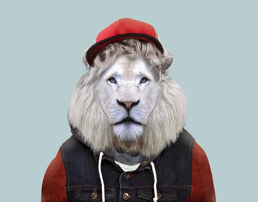animals-dressed-like-humans-zoo-porraits-yago-partal-146-57d65e0f2875d__880