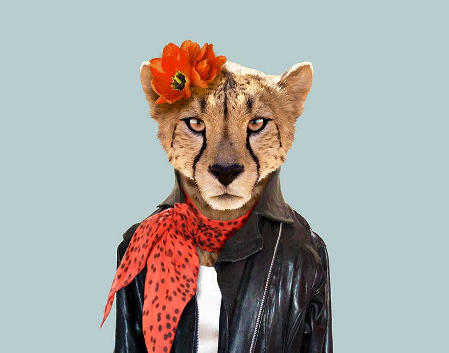 animals-dressed-like-humans-zoo-porraits-yago-partal-31-57d65cdee96c1__880