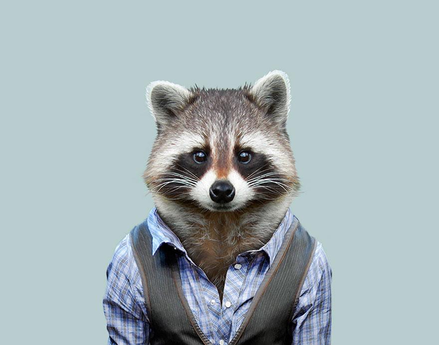 animals-dressed-like-humans-zoo-porraits-yago-partal-35-57d65d0b20586__880