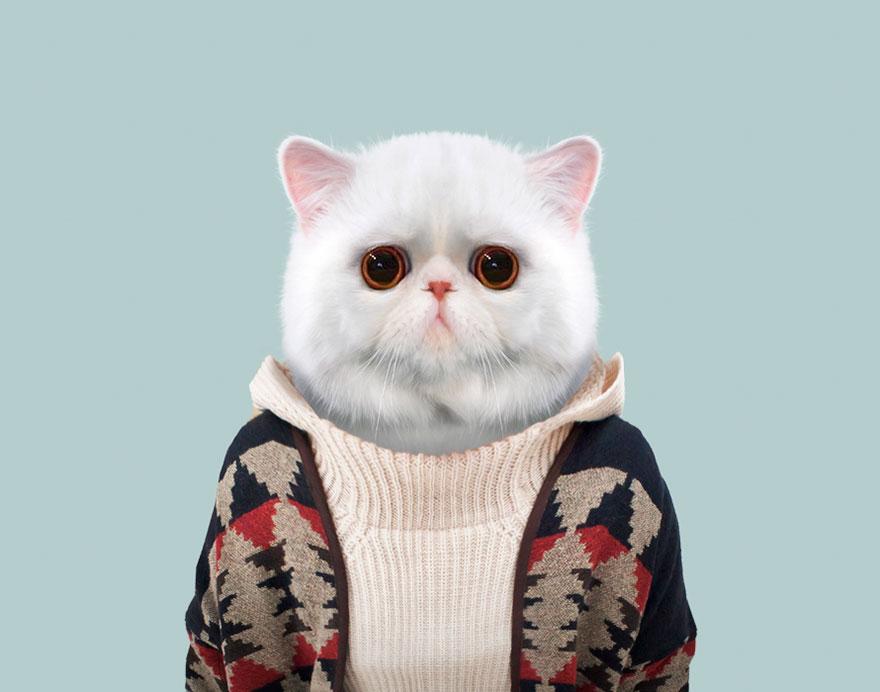 animals-dressed-like-humans-zoo-porraits-yago-partal-55-57d65d360deca__880