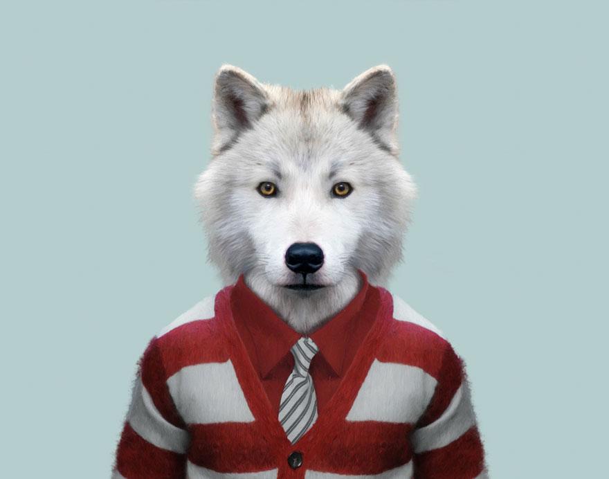 animals-dressed-like-humans-zoo-porraits-yago-partal-8-57d65cb587324__880
