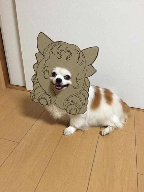 dog-costume-cardboard-cutouts-myouonnin-14-580f5407a0c93__605