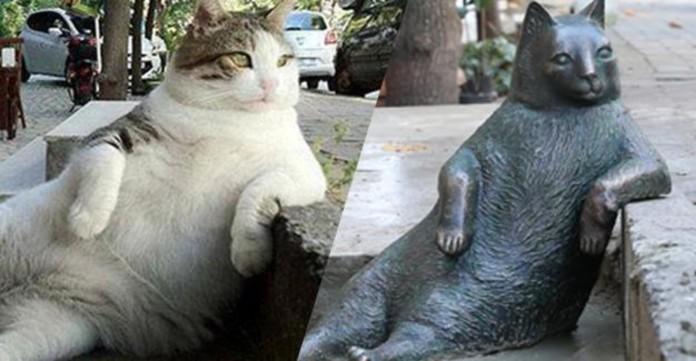 До Дня тварин в Стамбулі встановили пам'ятник товстому коту