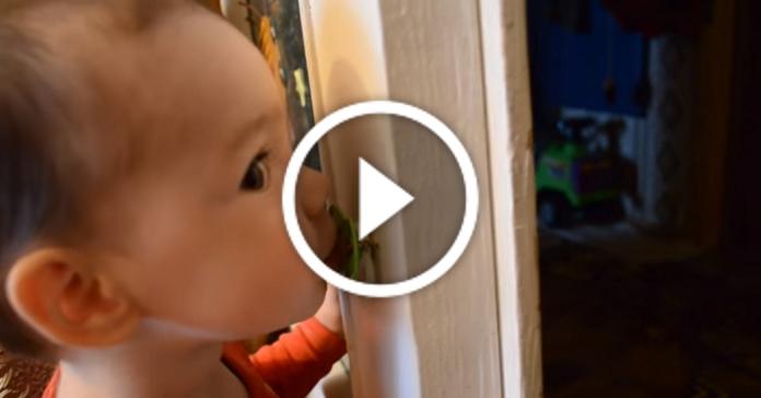 Батькам на замітку. Крутий спосіб відучити малюка від пустушки :)
