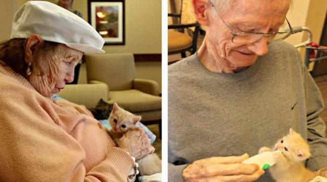 В Аризоні об'єднали будинок пристарілих з притулком для тварин. Усі щасливі!