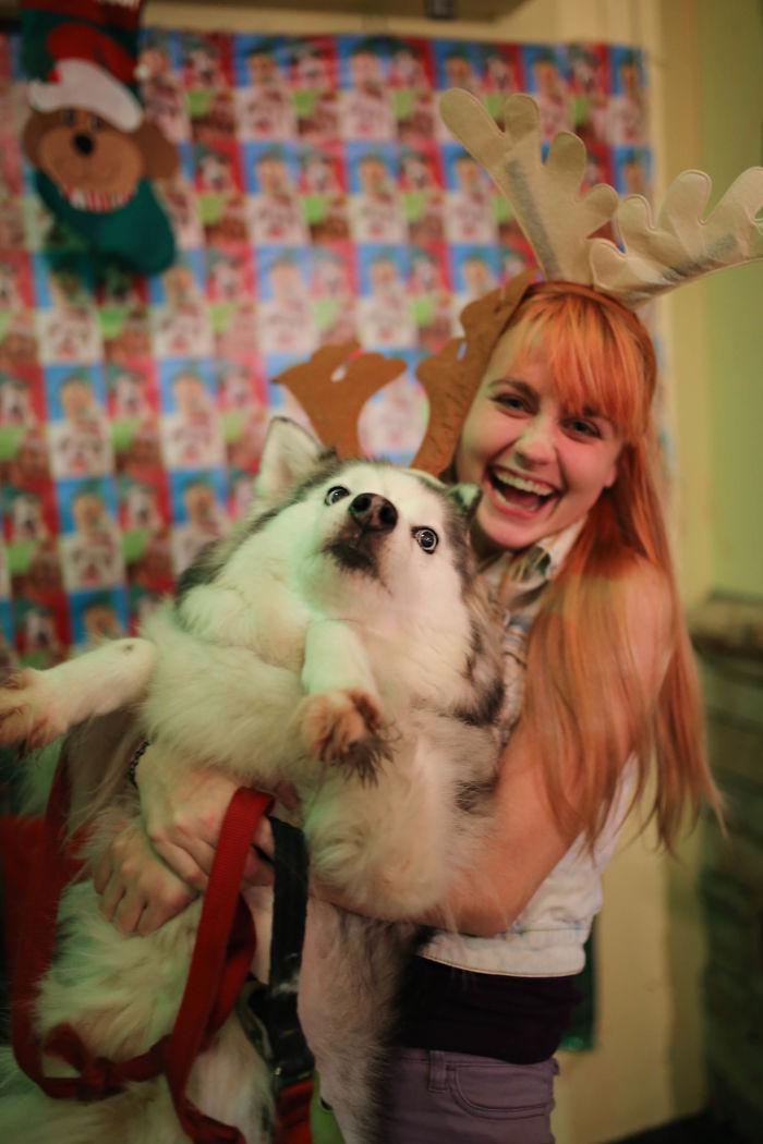 animals-do-not-like-christmas-5838137c85e25__700