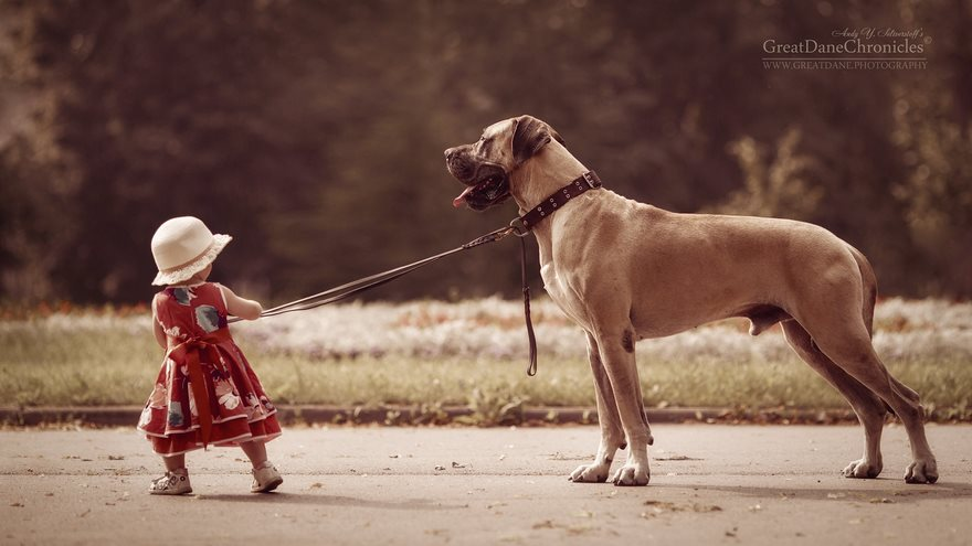 little-kids-big-dogs-photography-andy-seliverstoff-24-584fa92ca8a9c__880