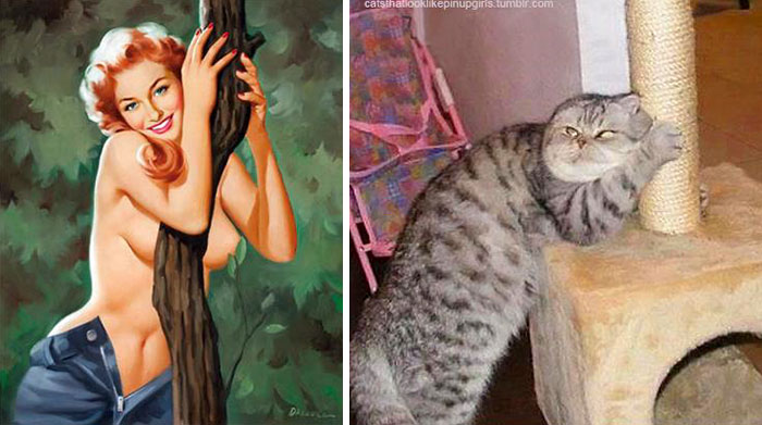 cats-vintage-pin-up-girls-31-5866670696f7e__700