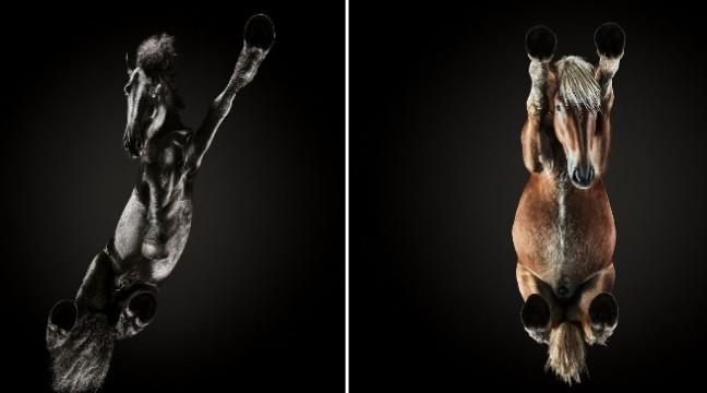 Щоб зробити ці знімки, фотограф залучив до роботи 40 помічників. Але результат вражає!