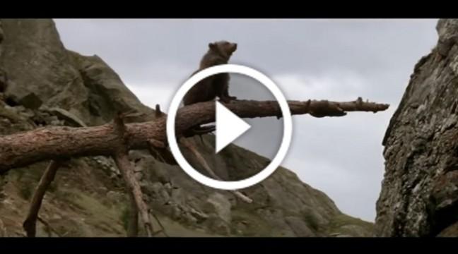 Одна з найпотужніших короткометражок про стійкість і боротьбу